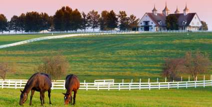 Westchester Equestrian Homes